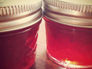 Santa Rosa Plum Jam found on PunkDomestics.com