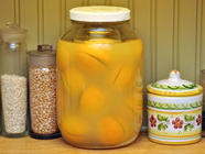 How To Make Preserved Meyer Lemons found on PunkDomestics.com
