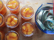 Pickled Pumpkins found on PunkDomestics.com