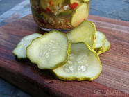 Quick Dill Pickles found on PunkDomestics.com
