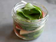 Pickled Ramps found on PunkDomestics.com
