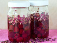 Raspberry & Rose Vinegar found on PunkDomestics.com