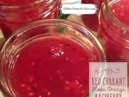 Red Currant, Blood Orange, Raspberry & Pear found on PunkDomestics.com