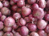 Pickled Red Onions found on PunkDomestics.com