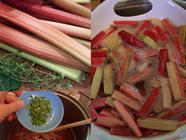 {Recipe} Rhubarb-Lemon Thyme Jam found on PunkDomestics.com