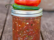 Tomato Salsa For Canning found on PunkDomestics.com