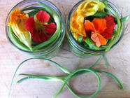 Pickled Garlic Scapes and Flowers w/Lavender