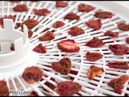 Dehydrated Strawberries found on PunkDomestics.com