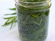 Homemade Tarragon Vinegar found on PunkDomestics.com