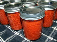 Homemade Tomato Paste from Fresh Tomatoes found on PunkDomestics.com