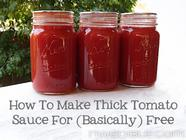 Basically Free Tomato Sauce Made with Skins