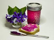 Violets found on PunkDomestics.com
