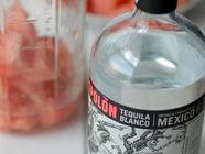 Watermelon Infusion found on PunkDomestics.com