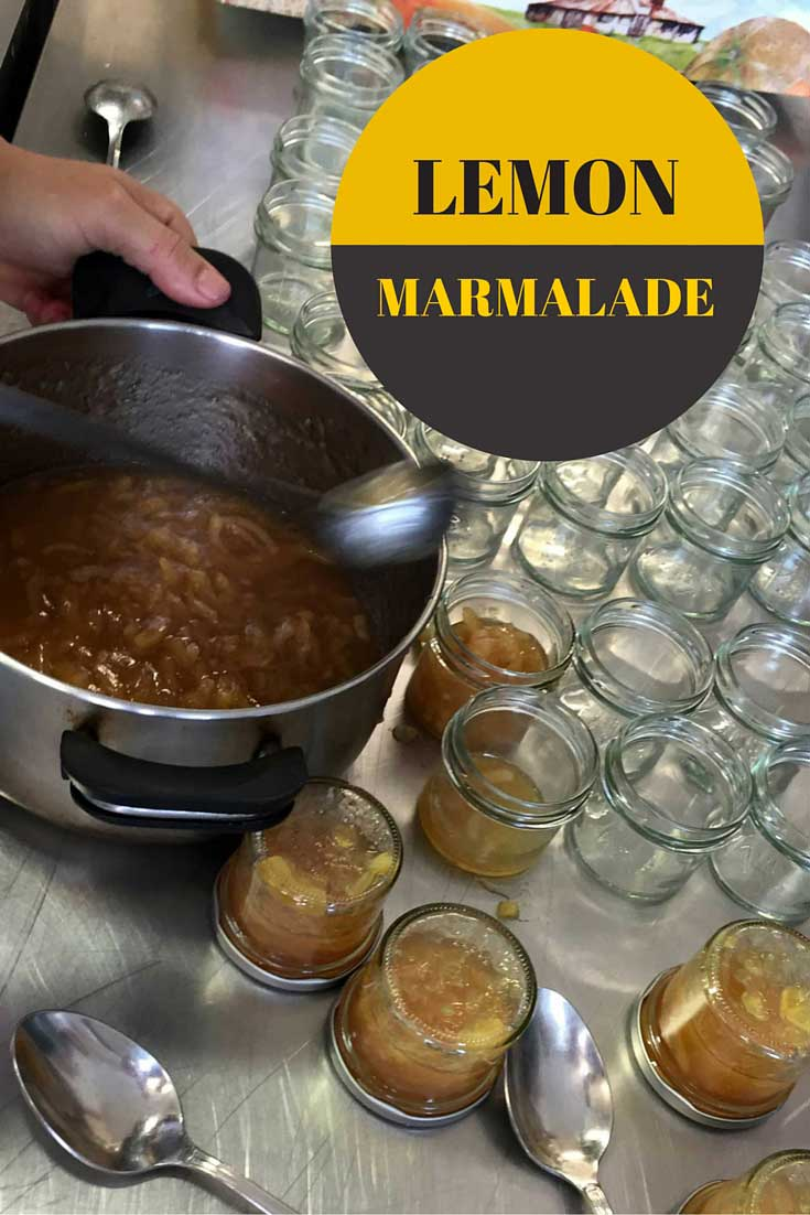 DIY lemon marmalde, found on PunkDomestics.com