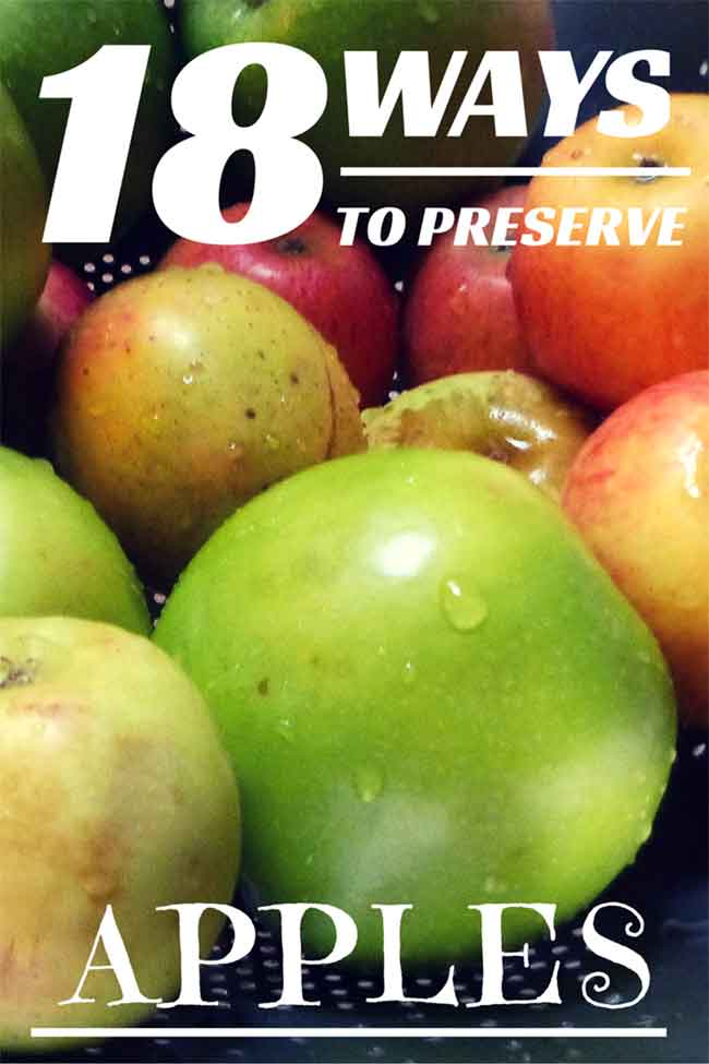18 Ways to Preserve Apples, found on PunkDomestics.com