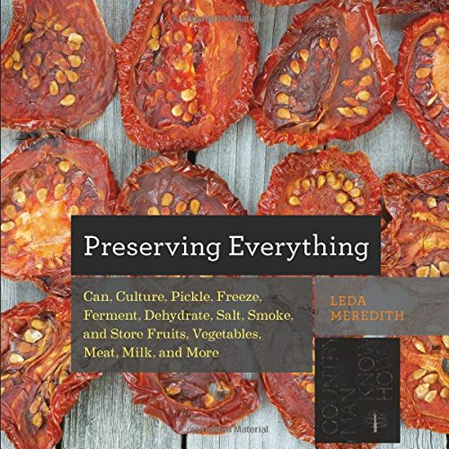 Review: Preserving Everything, found on PunkDomestics.com