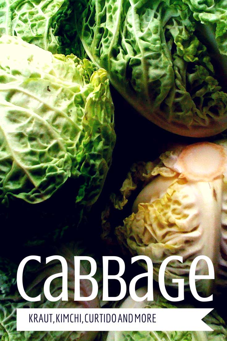 Cabbage from Kraut to Kimchi and Beyond, found on PunkDomestics.com