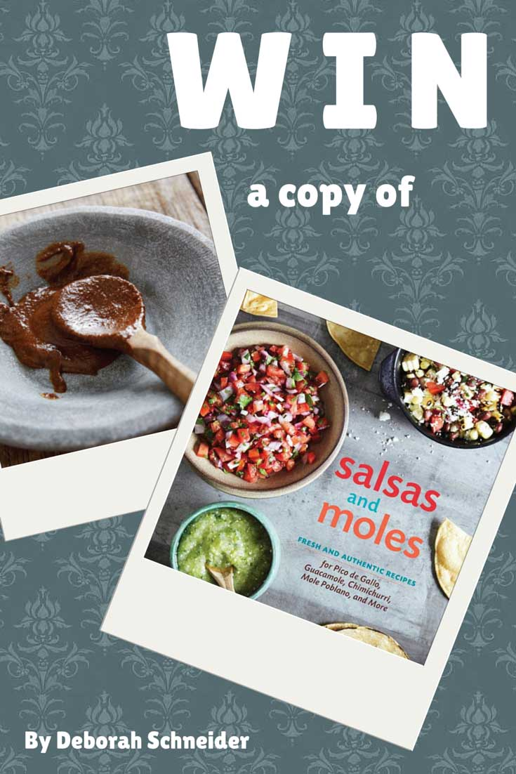 Salsas and Moles by Deborah Schneider: Review and Giveaway, found on PunkDomestics.com