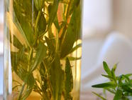 DIY Tarragon Vinegar found on PunkDomestics.com