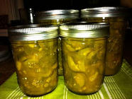 Green Bean/Zucchini Chutney & Dilly Beans found on PunkDomestics.com
