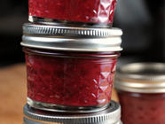 Cranberry Ketchup found on PunkDomestics.com