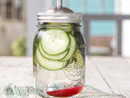 Spicy Cucumber Gin found on PunkDomestics.com