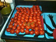 Back to Basics: Canned Whole Tomatoes  found on PunkDomestics.com