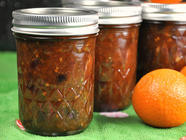Lemon Clementine Chutney found on PunkDomestics.com