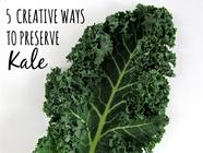5 Creative Ways to Preserve Kale found on PunkDomestics.com