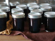 Blueberry Jam - Three Ways  found on PunkDomestics.com