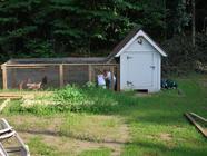 {Backyard Chickens} The Coop! found on PunkDomestics.com