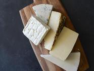 DIY Dehydrated Cheese Powder found on PunkDomestics.com