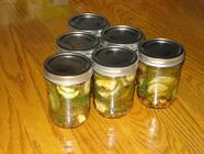 Refrigerator Pickles...A First Timer's Tale found on PunkDomestics.com