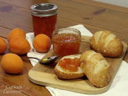 No Pectin Apricot Jam found on PunkDomestics.com