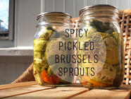 Spicy Pickled Brussels Sprouts found on PunkDomestics.com