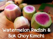 Watermelon Radish & Bok Choy Kimchi found on PunkDomestics.com