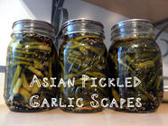 Asian Pickled Garlic Scapes found on PunkDomestics.com