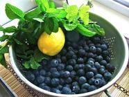 Minted Blueberry Jam found on PunkDomestics.com