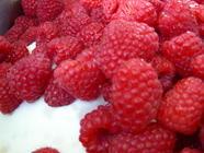 Red Raspberry Jam found on PunkDomestics.com