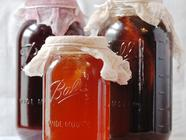 Vinegar and Kombucha Mothers  found on PunkDomestics.com