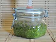 Fermented Mexican Cilantro Pesto found on PunkDomestics.com
