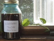 Homemade Elderberry Tincture found on PunkDomestics.com