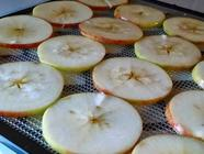 Dehydrated Apples and Some Tricks found on PunkDomestics.com