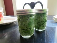Lacto-fermented Pesto found on PunkDomestics.com