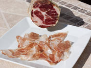 Coppa found on PunkDomestics.com