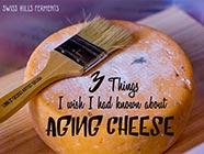 Things I Wish I Had Known About Aging Cheese found on PunkDomestics.com