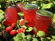 Strawberry Mojito Jelly found on PunkDomestics.com
