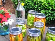Three Pickles for a  Pickle Party! found on PunkDomestics.com