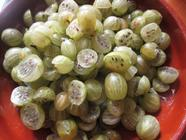 Fermenting Gooseberries: Salsa, Dip and Kvass found on PunkDomestics.com