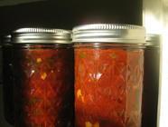 Ancho Chili Tomato Salsa found on PunkDomestics.com